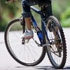 Up to 55% Off Bike Tour or Rental in Franklin