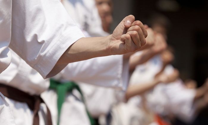 Extreme Punch Martial Arts - Boca Raton: One-Month Kids' Martial-Arts Course or Adult Self-Defense and Kickboxing Course at Extreme Punch Martial Arts (51% Off)