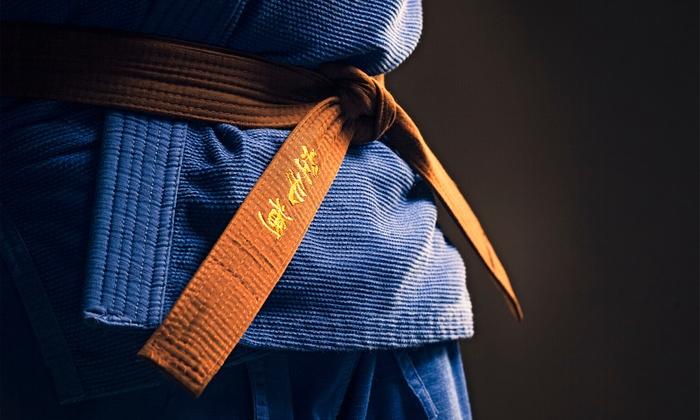 Premier Martial Arts of Atlanta - Big Creek: One Month of Kids' Martial-Arts or Adult Krav Maga Classes at Premier Martial Arts of Atlanta (Half Off)