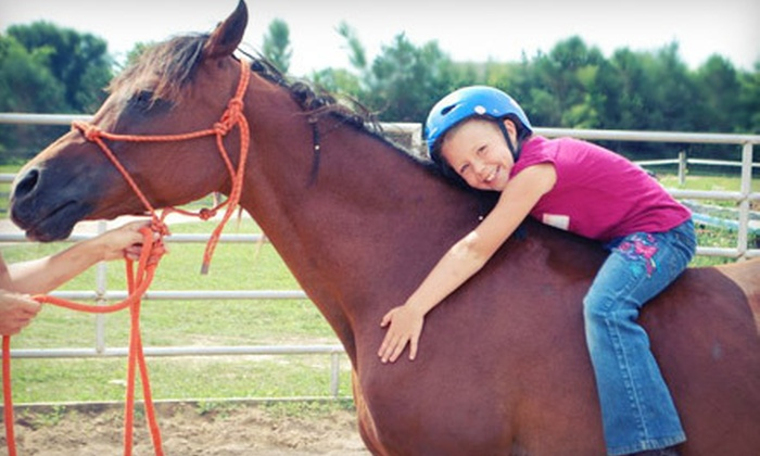 Giddy Up Stables - Minnetrista: 60-Minute Kids' Class or 90-Minute Intro to Horsemanship at Giddy Up Stables in Minnetrista (Up to 51% Off)