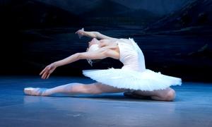 """Ovation Event: 2x """"Schwanensee"""" mit dem St. Petersburg Festival Ballett im Januar in Hamburg, Bremen und Siegen (bis zu 38% sparen)"""