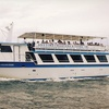Up to 54% Off a Sightseeing Cruise