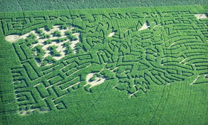 Pope Farms - Wiggins: Pumpkin-Patch and Corn-Maze Admission for Two, Four, or Six with Beverages at Pope Farms (Up to 53% Off)
