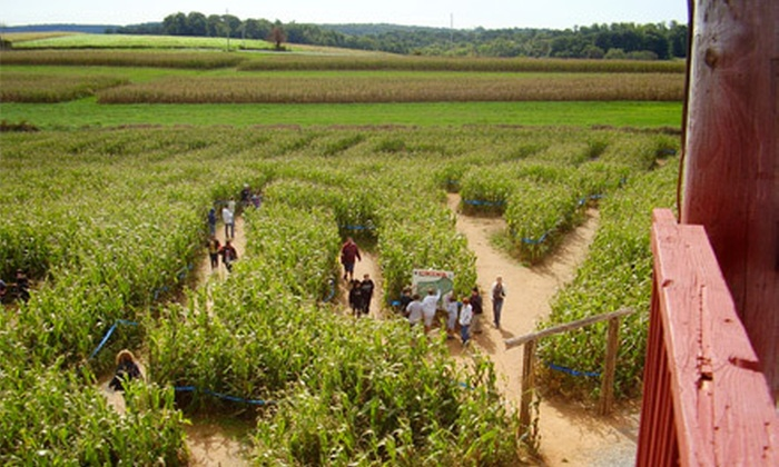 Maize Quest Fun Park - Jarrettsville: Mayan Mystery Corn Maze for Two or Four at Maize Quest Fun Park (Up to 57% Off)