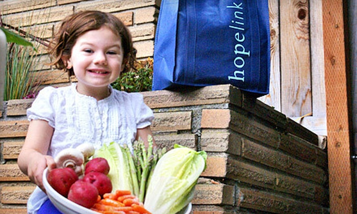 Hopelink: $9 Donation to Help Provide Fresh Produce for Families
