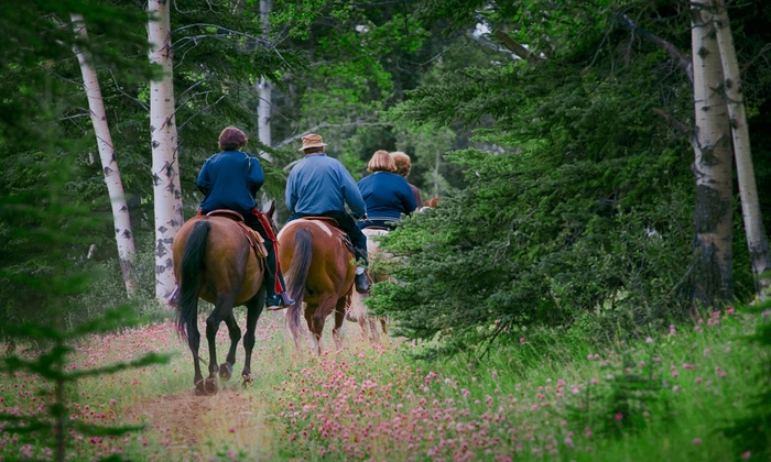 Breckenridge Stables - Breckenridge: Trail Ride for Two or Four with Optional Dinner at Breckenridge Stables (Up to 54% Off). Four Options Available.