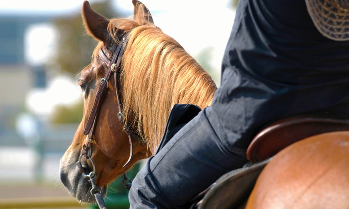 Sugar Ditch Stables - Galt: Two or Four Private Horseback-Riding Lessons at Sugar Ditch Stables (Up to 57% Off)