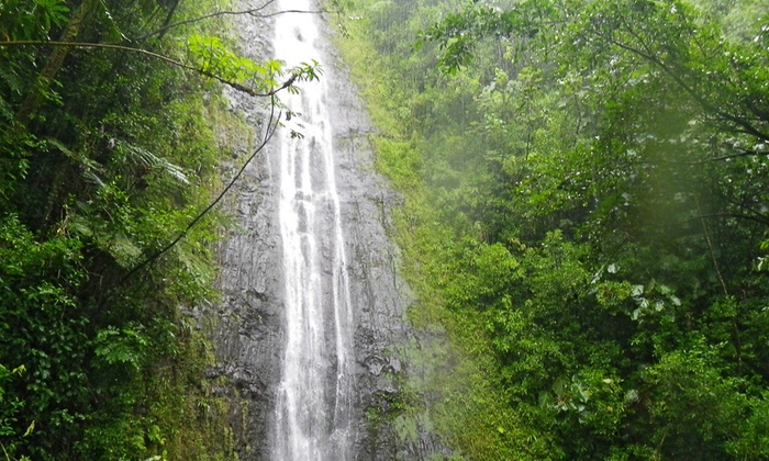 Hawaii Tour Sites - Honolulu: Choose From Any Four Eco-Tours From Hawaii Tour Sites (Up to 43% Off)
