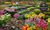 Merrifield Garden Center - Multiple Locations: $25 for $50 Worth of Plants, Supplies, and Landscaping Services at Merrifield Garden Center