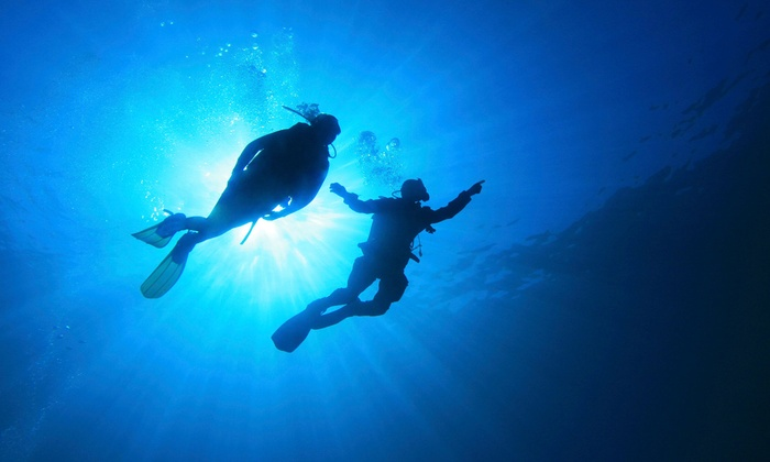 Sea Stallion Scuba Outfitters - Irvine Industrial Complex-East: $189 for a Scuba-Certification Course at Sea Stallion Scuba Outfitters ($575 Value)