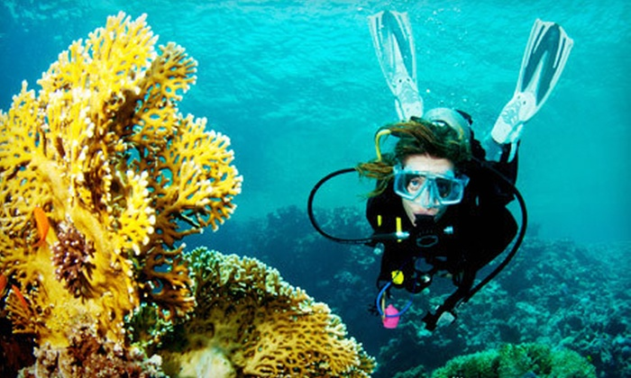 Seascapes USA - Syosset: Discover Scuba Course for One or Two at Seascapes USA (Up to 62% Off)