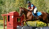 Spruce Meadow  Farm - Clarence: Horseback-Riding and Grooming Lesson for One or Two at Spruce Meadow Farm (Up to 63% off