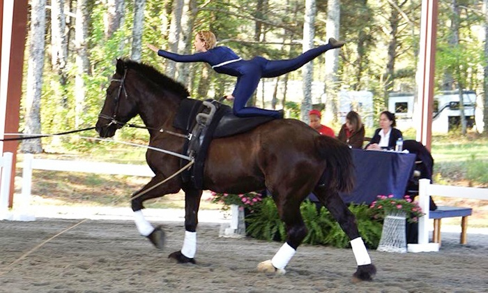 Winding Creek Stables - 5: One or Three Group or Private Equestrian Vaulting Lessons at Winding Creek Stables (Up to 50% Off)