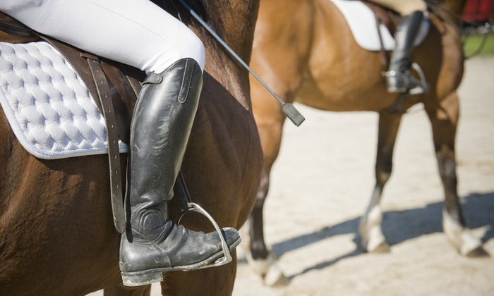 Serenity Ridge Stables - Indianapolis: One or Two 60-Minute Horseback-Riding Lessons at Serenity Ridge Stables (Up to 53% Off)