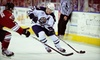 Greenville Road Warriors - Pettigru Street Area: Greenville Road Warriors Hockey Game and a Souvenir Hat for One or Four at Bi-Lo Center on February 7 (Up to 51% Off)