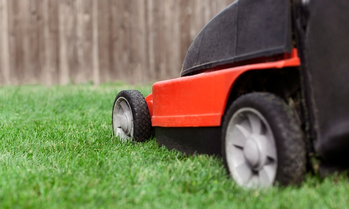 A Plus Maintenance - Charleston: $55 for Two Lawn-Cutting and Edging Services from A Plus Maintenance ($125 Value)