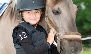Chrislar Farm & Equestrian Center: Four or Six Horseback-Riding Lessons at Chrislar Farm & Equestrian Center (Up to 37% Off)