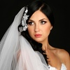 2014 Fall Bridal Celebrations Show – Up to 54% Off