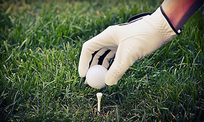 Sath-Nop Golf Academy - Norcross: One, Three, or Five 60-Minute Advanced Golf Lessons at Sath-Nop Golf Academy (Up to 73% Off)