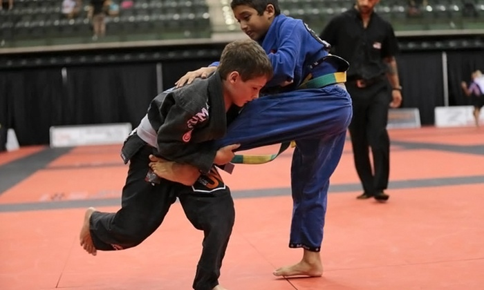 Randori Jiu Jitsu - Mokena: 5 or 10 Martial Arts Classes or One Month of Unlimited Kids' Classes at Randori Jiu Jitsu (Up to 77% Off)