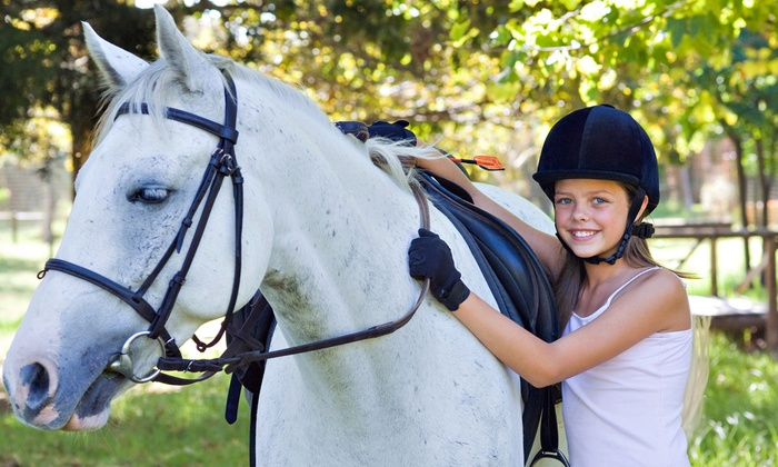 New Traditions Riding Academy - Palos Hills: Horseback-Riding Lessons for Two or Four at New Traditions Riding Academy (Up to 54% Off)