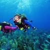 Tauchkurs Scuba Diver über 2 Tage