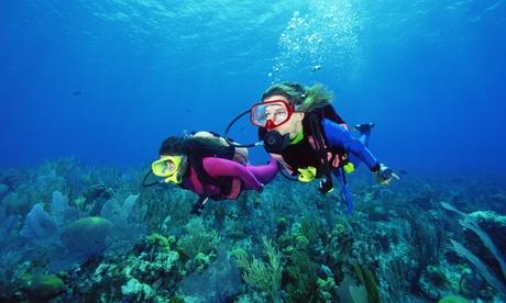Tauchkurs Scuba Diver für ein oder zwei Personen über 2 Tage im Tauchcenter Wuppertal Meeresauge