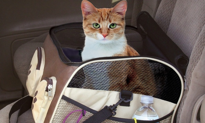 Pet Store 3-in-1 Booster, Car Seat, and Carrier: Pet Store 3-in-1 Booster, Car Seat, and Carrier for Pets Up to 18 Pounds. Free Returns.