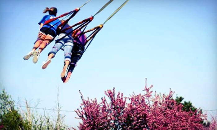 Doennig Sport Swings and Ozark Paintball - North Galloway: Sport-Swing Rides and Activities for Two, Four, or Six at Doennig Sport Swings and Ozark Paintball (Up to 58% Off)