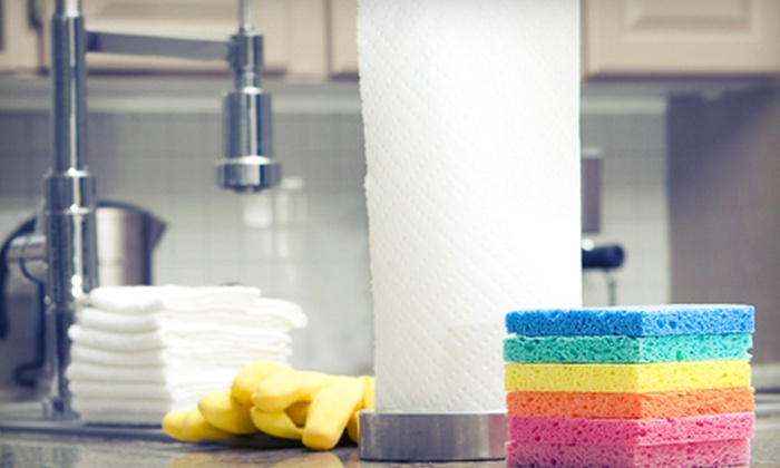 Lily's Housekeeping - Tampa Bay Area: Three or Four Hours of Housecleaning from Lily's Housekeeping (Up to 52% Off)