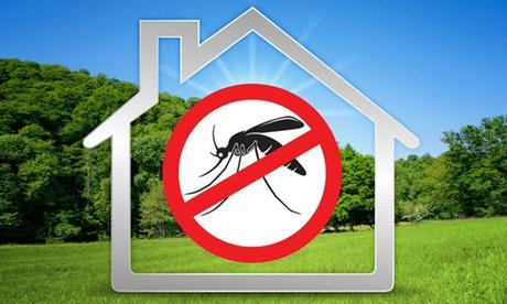 Disinfestazione zanzare, derattizzazione o deblattizzazione (sconto fino a 72%)