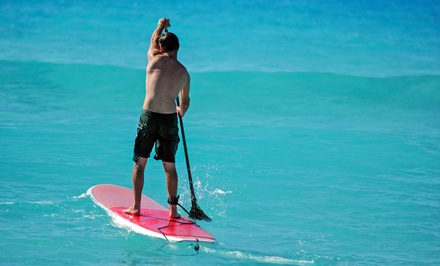 Two-Hour Group Standup-Paddleboard Lesson for One, Two, or Four from Marina Paddle (Up to 75% Off)