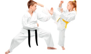 Ryu's Martial Arts: One or Four Weeks of Unlimited Introductory Tae Kwon Do Classes at Ryu's Martial Arts (Up to 65% Off)