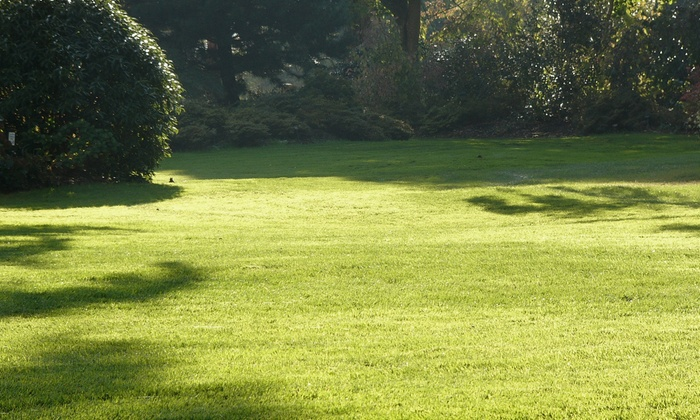 Tar Heel Lawn Doctor - Raleigh / Durham: Lawn Aeration with Optional Seeding from Tar Heel Lawn Doctor (Up to 50% Off)