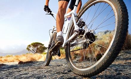 1, 3 o 7 días de alquiler de bicicleta