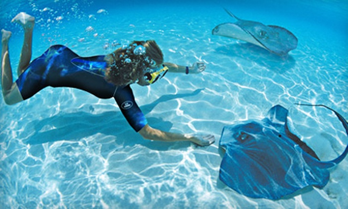 Long Island Aquarium & Exhibition Center - Long Island Aquarium: $30 for a Pirate Snorkel Adventure and Aquarium-Only Visit at Long Island Aquarium (Up to $61 Value)