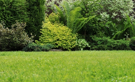 $56 for Four Lawn Mowing, Blowing, and Edging Sessions from Oasis Lawncare ($140 Value)