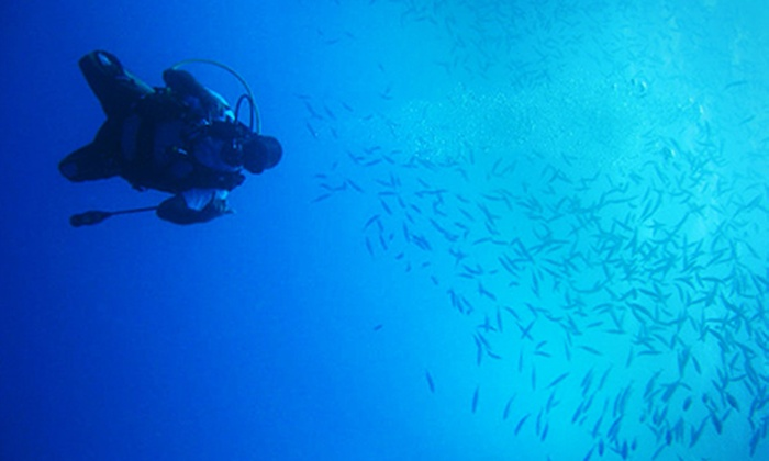 Waikiki Diving Center - Waikiki: Beginner or Advanced Scuba-Diving Excursion for One or Two from Waikiki Diving Center (Up to 56% Off)