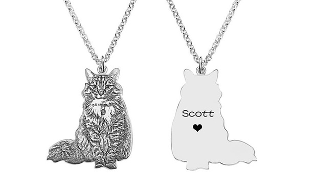 Personalised Silver Pet Necklace with Engraving: One ($45) or Two ($85) (Dont Pay up to$413.2)