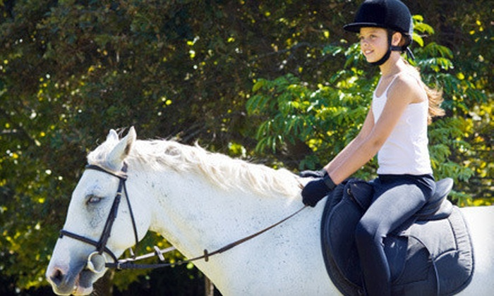 Stepping Stones Riding Academy - Brooks Atkinson Theatre: Two, Three, or Four Regular or Therapeutic Horseback-Riding Lessons at Stepping Stones Riding Academy (Up to 70% Off)