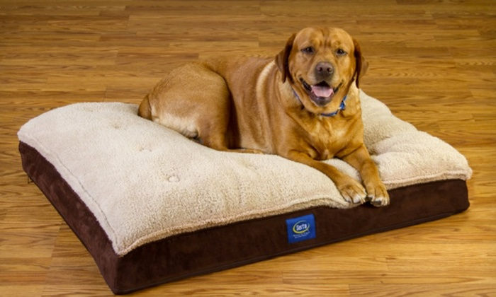 Serta Orthopedic Dog Bed Groupon Goods