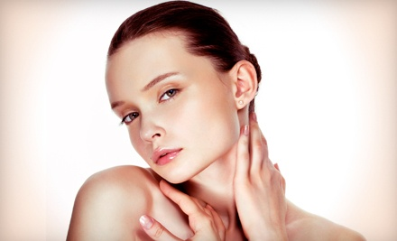 Swiss European Facial with a Microdermabrasion or Exfoliating Body Treatment at LeSante Spa & Beauty (Up to 86% Off)