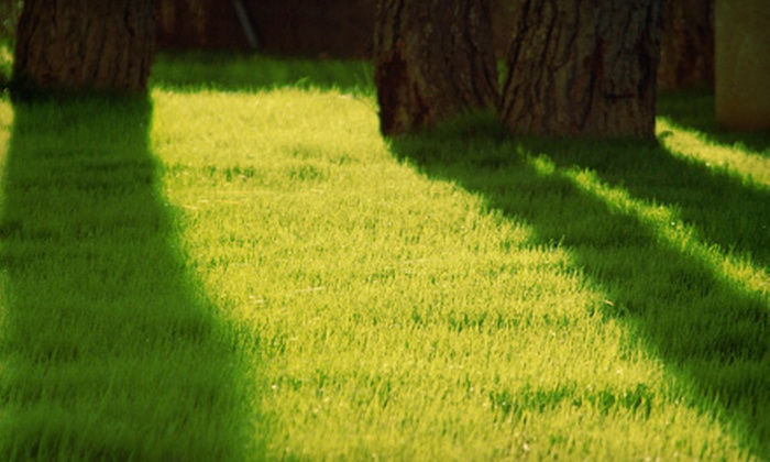JOCO Lawn & Turf - the customers home.: $39 for Lawn Aeration for Up to 8,000 Square Feet from Joco Lawn & Turf ($80 Value)