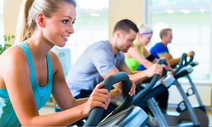 Just Fitness 4U - Check: Four- or Six-Week Membership Package with Training Sessions at Just Fitness 4U (Up to 85% Off)
