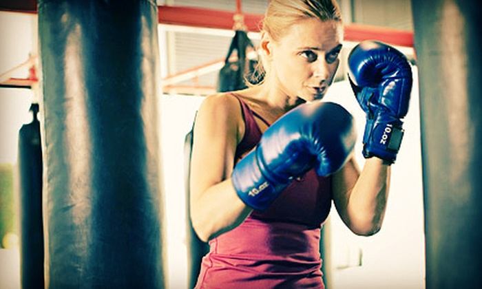 Tigers World Tampa - South Tampa: 10 Group Cardio Fitness Classes or One Month of Unlimited Classes at Tigers World Tampa (Up to 61% Off)