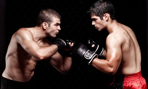 United Training Center: One or Two Months of Gold Membership with Training Sessions at United Training Center (Up to 74% Off)