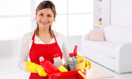 New York City House Cleaning - Deals in New York City, NY ...