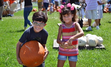$27 for a Visit for a Family of Four to the Coconut Grove Pumpkin Patch Festival  ($50 Value)