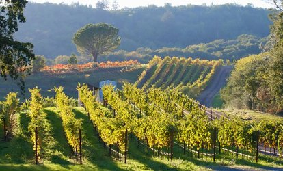 image for Two, Four or Six Person <strong>Wine Tasting</strong> and Complimentary Tour at Delaney Vineyards & Winery (Up to 57% Off)