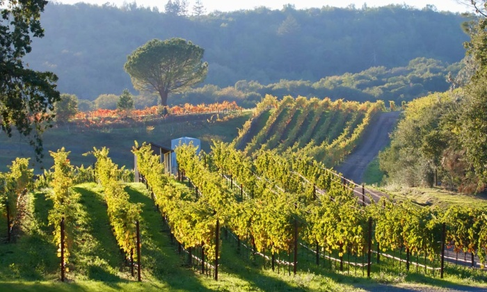 AK Limousine - Napa / Sonoma: $245 for a Five-Hour Wine-Country SUV Tour for Up to Six from AK Limousine Inc. ($500 Value)